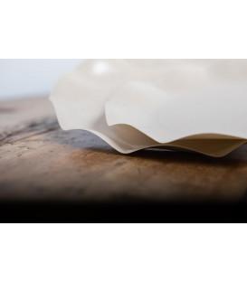 Piatti Piani di Carta Compostabile a Petalo Avorio 27 cm