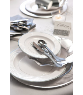 Piatti Piani di Carta a Righe Bordo Argento Classic Silver