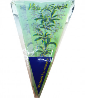 Festone tema Mughetto VIVA GLI SPOSI 15 Bandierine 600 cm