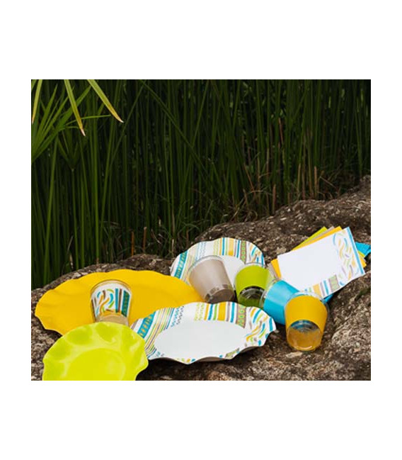 Bicchieri di Plastica Ethnic 300 cc